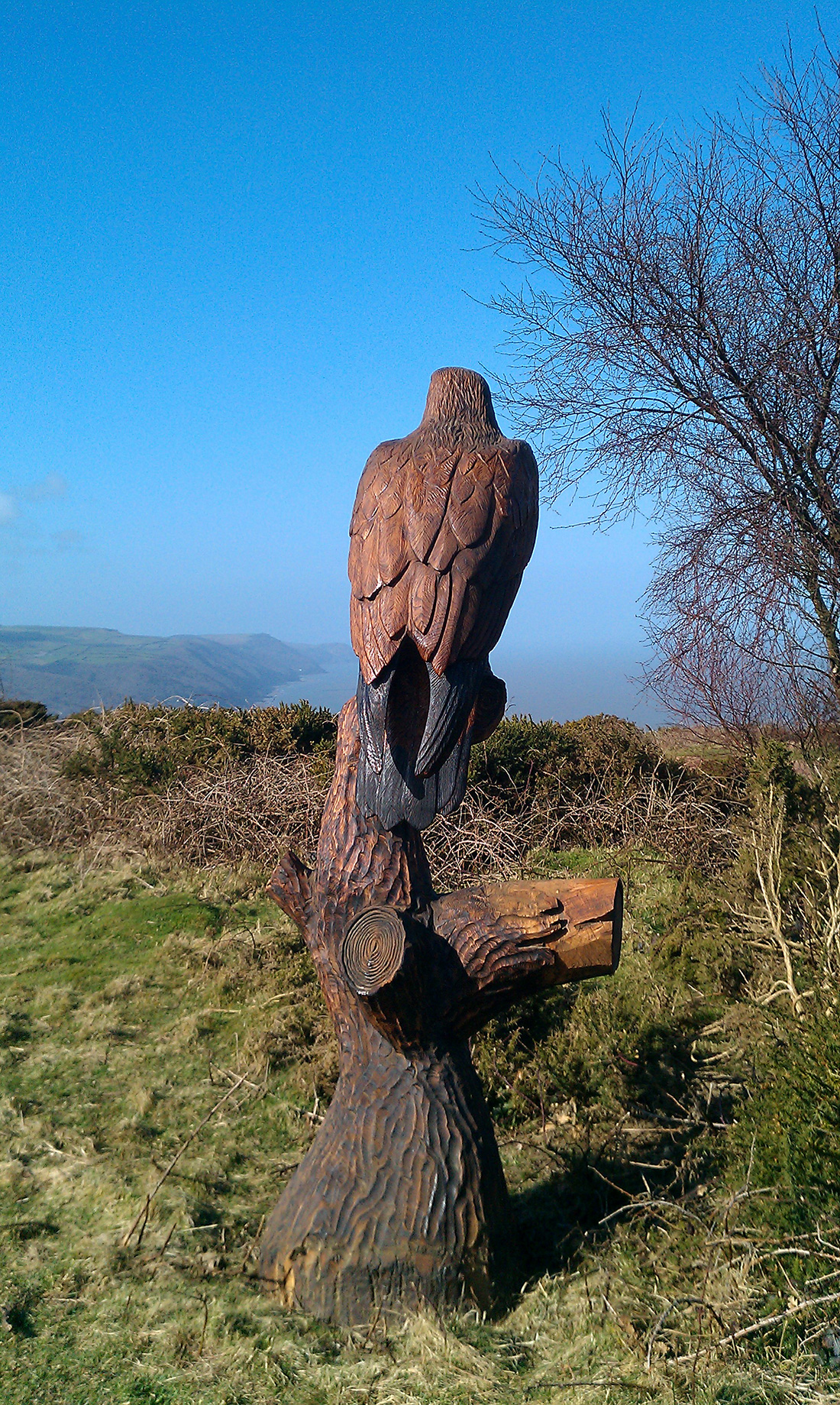 Large bird sculpture